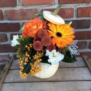 fall pumpkin arrangment white