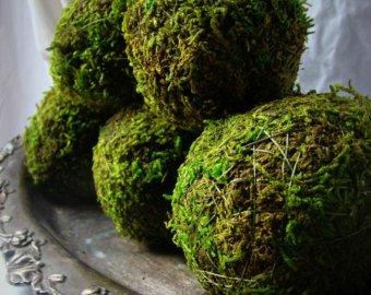 moss orbs dozens available