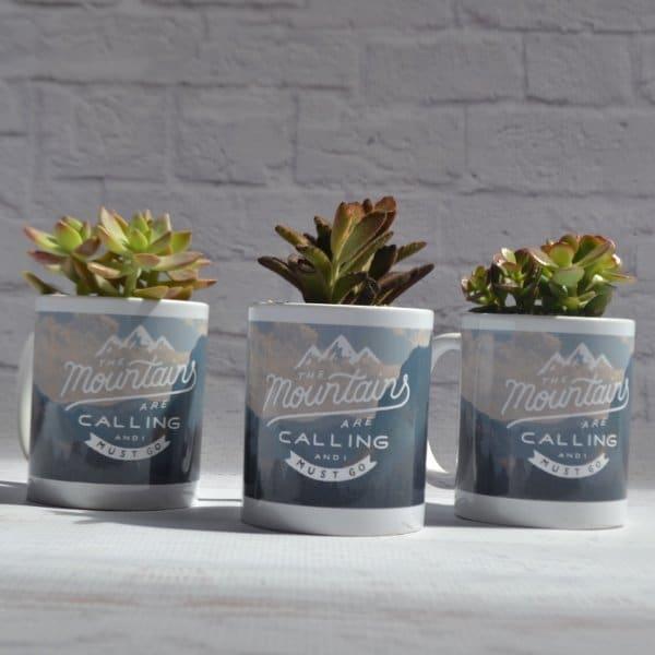mountain mug succulent 600x600 1