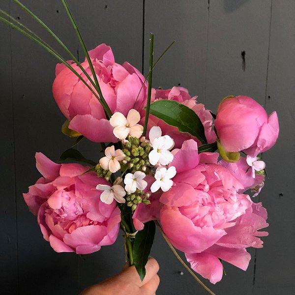 Bunch of Peonies peony hand tied bouquet