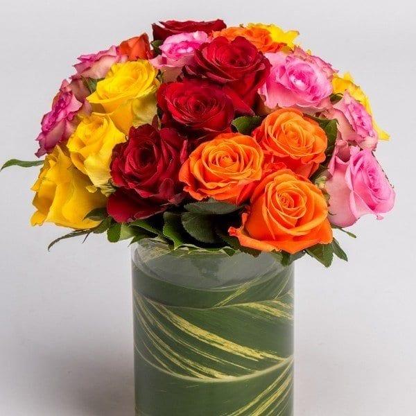 roses red pink orange yellow