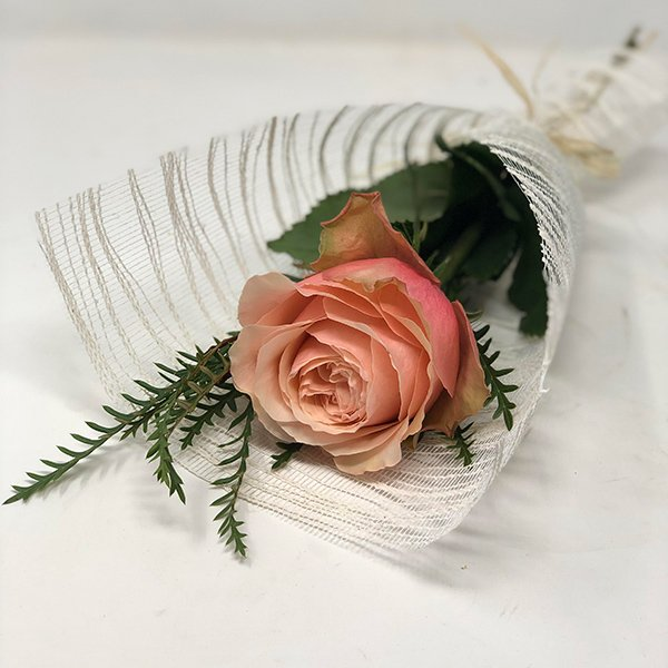 valentines single wrapped pink rose